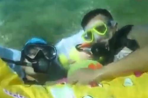 11072016-divers