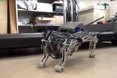 18072016-robotdog