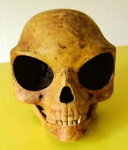 19072016-skull1