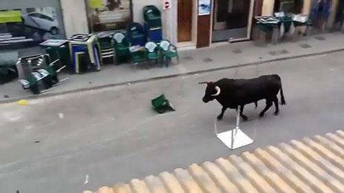 27072016-bull