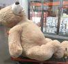 22092016-teddybear-s