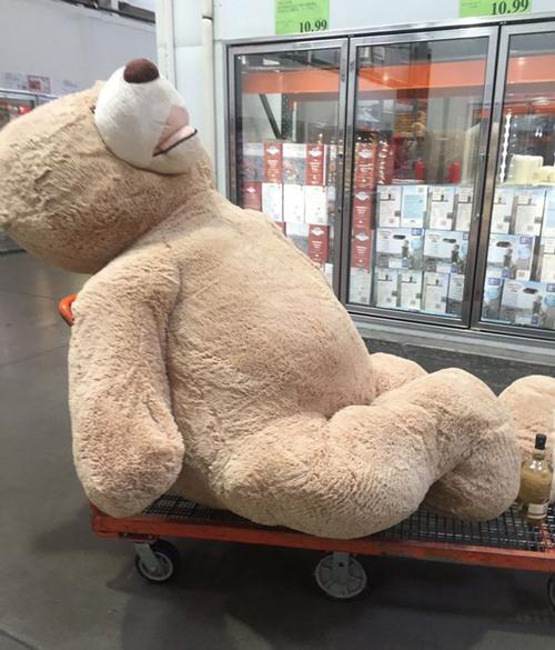 22092016-teddybear