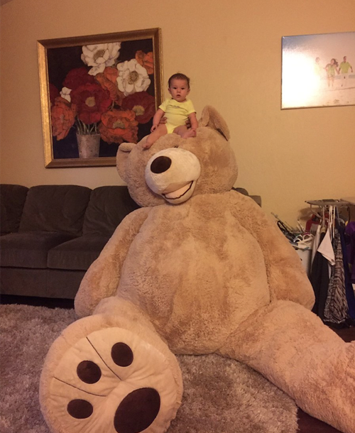 22092016-teddybear1