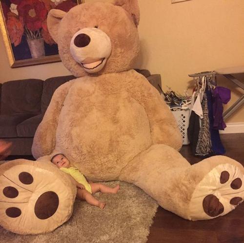22092016-teddybear2