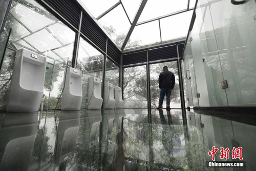02102016-glassbathrooms3