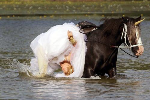 04102016-horse