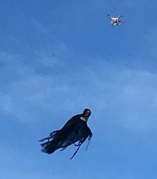 19102016-ghostdrone