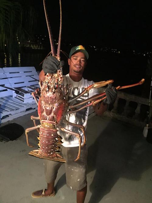19102016-lobster