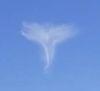 21102016-angel-s