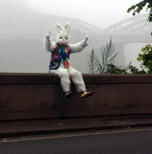 03112016-rabbitman