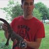 рыбаки поймали аллигатора