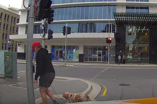 пешеход врезался в столб