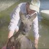кенгуру спасли из воды