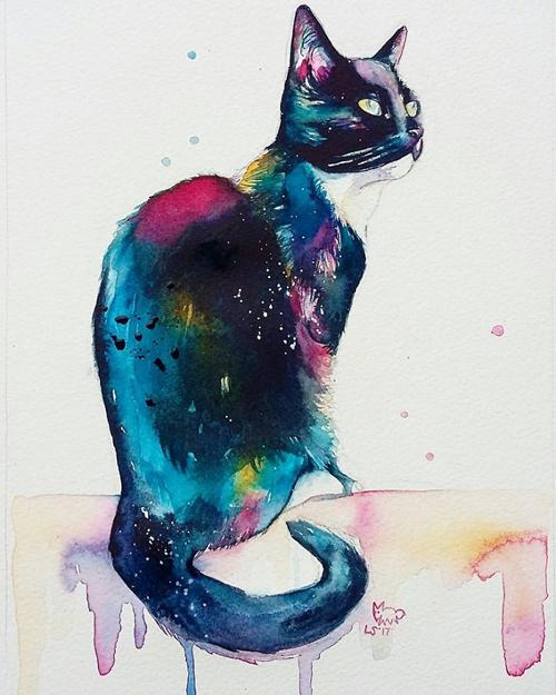 чёрные кошки в радужном цвете