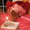 день рождения кошки