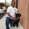 слепой пёс узнал хозяина