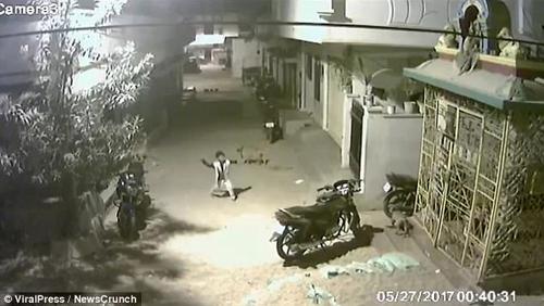 мальчик спас подругу от собак