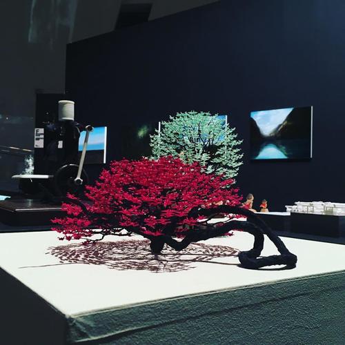 журавлики оригами и деревья бонсай