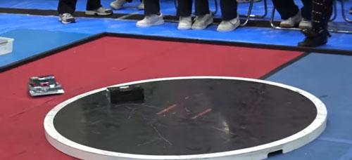 борьба сумо для роботов