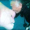 дайвер дружит с рыбой