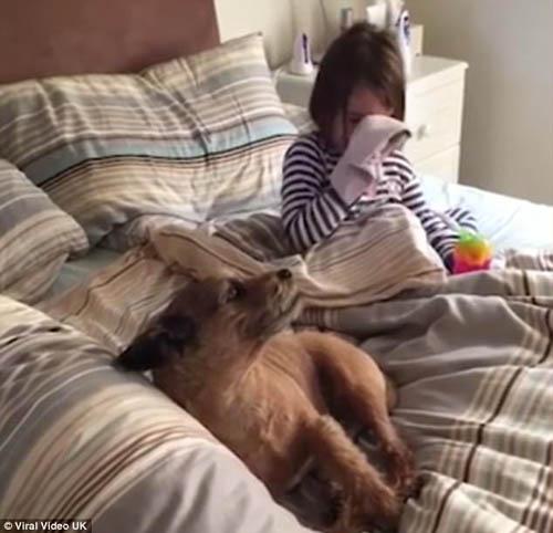 девочка и собака спели дуэтом