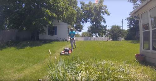 стрижка газонов во всех штатах сша