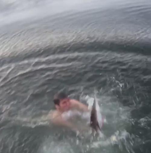 смельчак руками поймал акулу