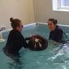 пёс учится плавать