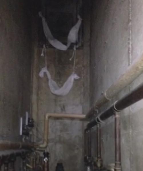 заключённые сняли на видео побег