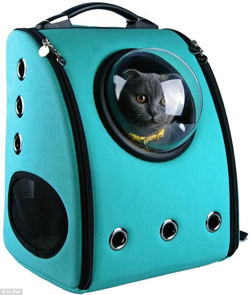 переноска для кошек с глазком