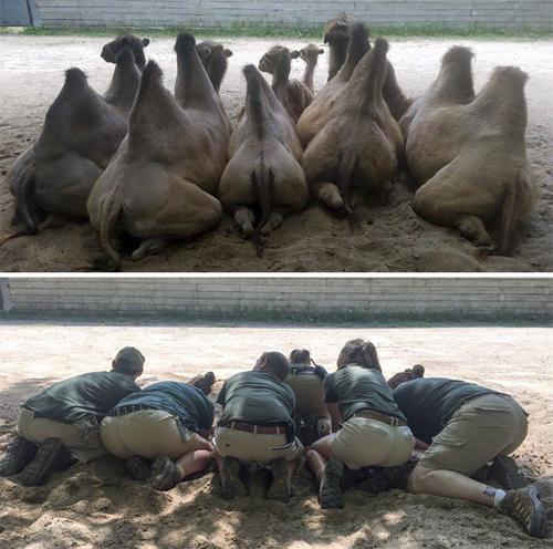 весёлая фотосессия в зоопарке