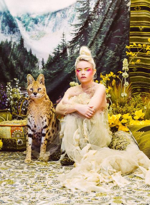 фотосессия с дикими животными
