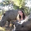 носороги любят ласку и объятия