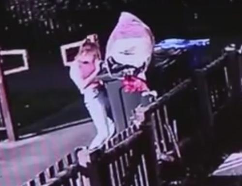 девочка выбросила кошку в помойку