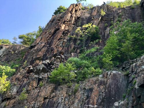 собаку спасли со скалы