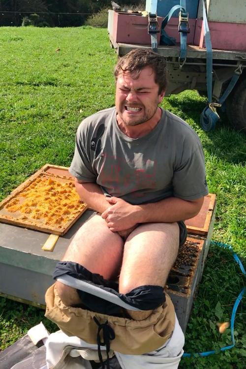 заработал благодаря пчёлам