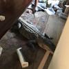 аллигатора водой принесло в дом