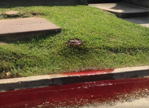 кровь полилась на дорогу