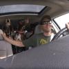 собаки закатили истерику в машине