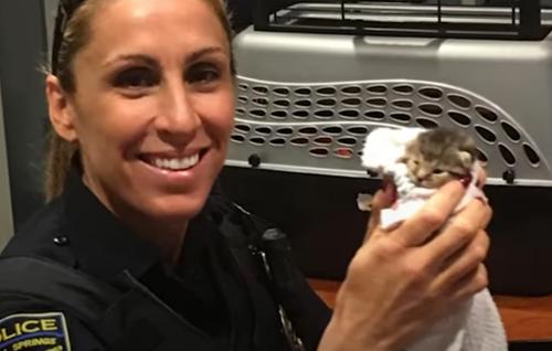 добрая женщина из полиции