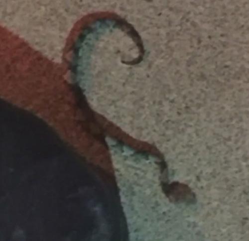 змея укусила женщину в ресторане