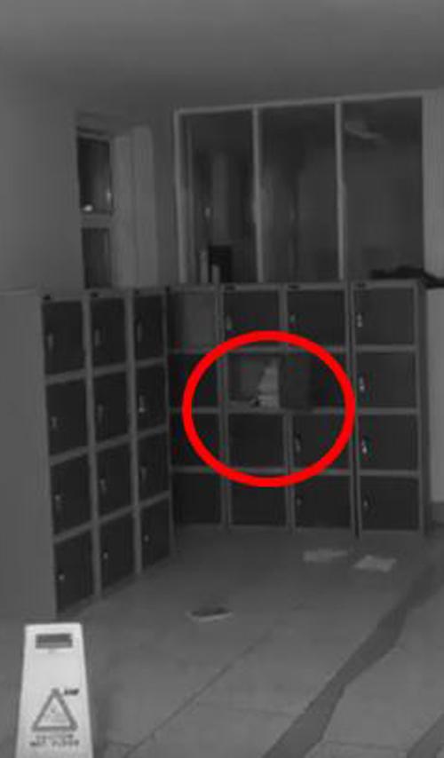 призрак устроил беспорядок в школе