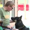 злая фальшивая служебная собака