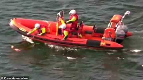 береговая охрана спасла собаку