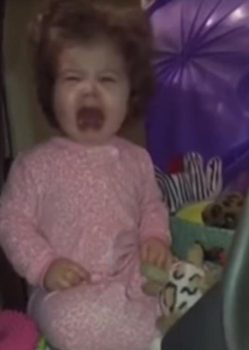 девочку напугала собачья игрушка