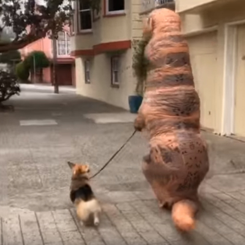 пёс прогулялся с динозавром