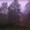 молния превратила ночь в день