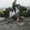 полицейские поливали водой кита