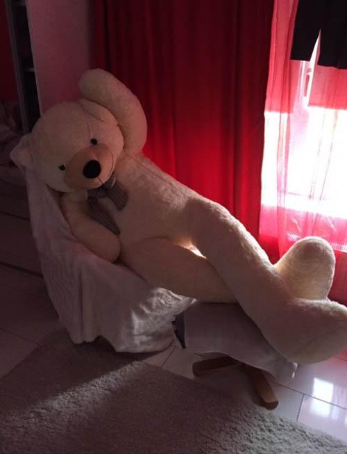 медведь с длинными ногами