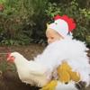 девочка в костюме курицы